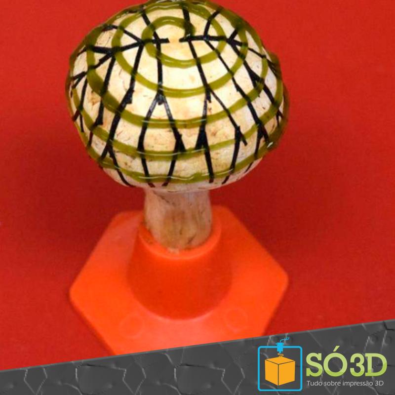 Cogumelos biônicos cobertos de cianobactérias impressas em 3D produzem bioeletricidade<